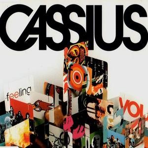 Feeling For You (CDS)