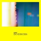 Poly Life Multi Soul