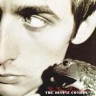 The Divine Comedy - The Frog Princess
