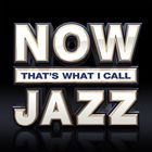 VA - Now That's What I Call Jazz CD1