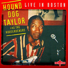Hound Dog Taylor - Live In Boston