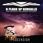 A Flock Of Seagulls - Ascension