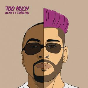 Too Much (CDS)