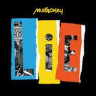 Mudhoney - Lie