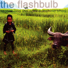 The Flashbulb - Resent And The April Sunshine Shed
