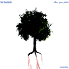 The Flashbulb - These Open Fields