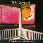 Peter Jefferies - A Chorus Of Interludes