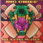 Platinum Jive (Greatest Hits 1969-1999)