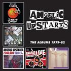 The Albums 1979-82: Teenage Warning CD1