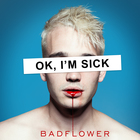 Badflower - OK, I'm Sick