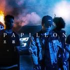 Papillon (CDS)