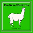 The Wave Pictures - Puncture My Pride