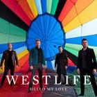 Hello My Love (CDS)