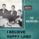 The Bachelors - I Believe (VLS)
