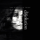 The Pineapple Thief - Dissolution CD2