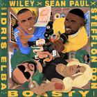 Sean Paul - Boasty (CDS)