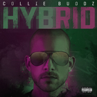 Collie Buddz - Hybrid