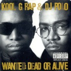 Kool G Rap & Dj Polo - Wanted: Dead Or Alive CD2