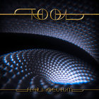 Tool - Fear Inoculum (CDS)