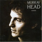 Murray Head - Voices (Vinyl)