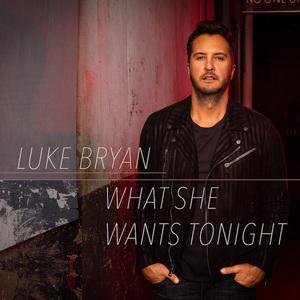 What She Wants Tonight (CDS)