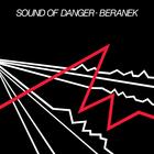 Sound Of Danger (Vinyl)