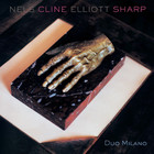 Nels Cline - Duo Milano (& Elliott Sharp)