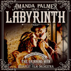Labyrinth (CDS)