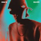 Silver (CDS)