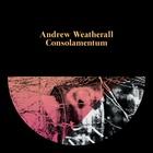 Andrew Weatherall - Consolamentum