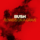 Bush - Flowers On A Grave (CDS)