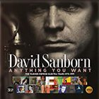 David Sanborn - Anything You Want: Warner / Reprise / Elektra Years