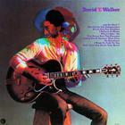 David T. Walker (Vinyl)