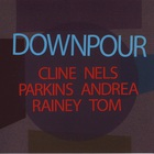 Nels Cline - Downpour (With Andrea Parkins & Tom Rainey)