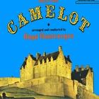 Camelot (Vinyl)